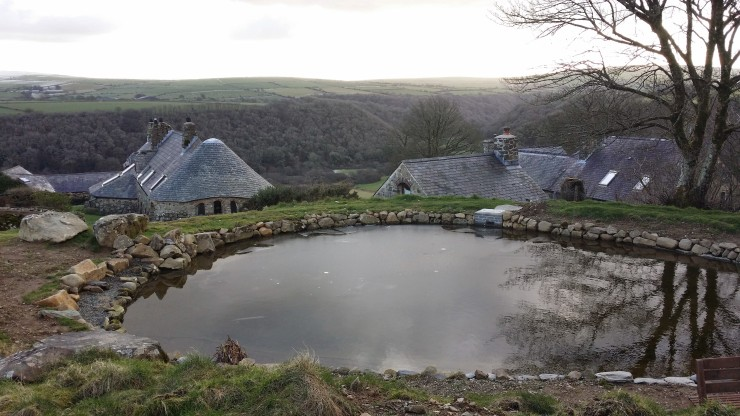 Half Frozen Pond